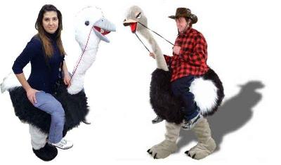 Mascotte struzzo ti porta a cavallo