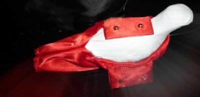 Offerte pazze Comparatore prezzi  Servente rossa per colomba professionale  il miglior prezzo