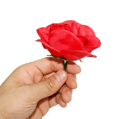 Da fiammifero a rosa