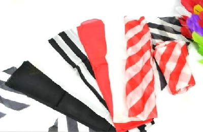 Zebra foulard