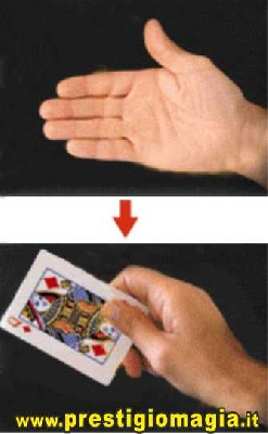 Produzione di carte