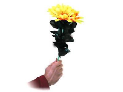 Bouquet comico