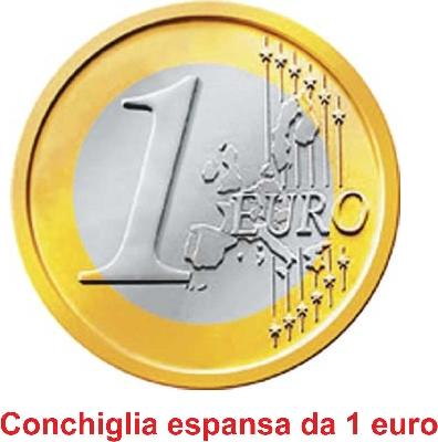 Conchiglia espansa da 1 euro