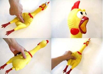 Pollo stridere comico