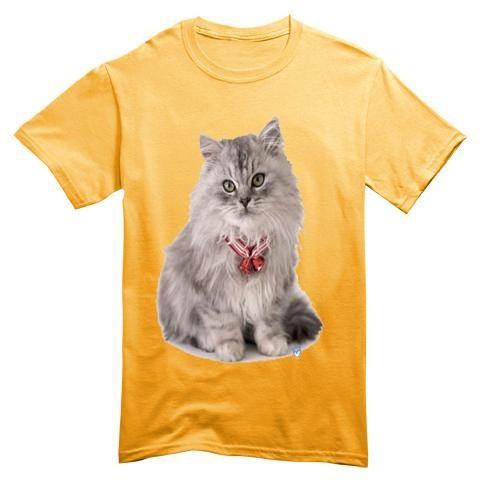T Shirt Bambino Gatto Grigio Collare Campanelle