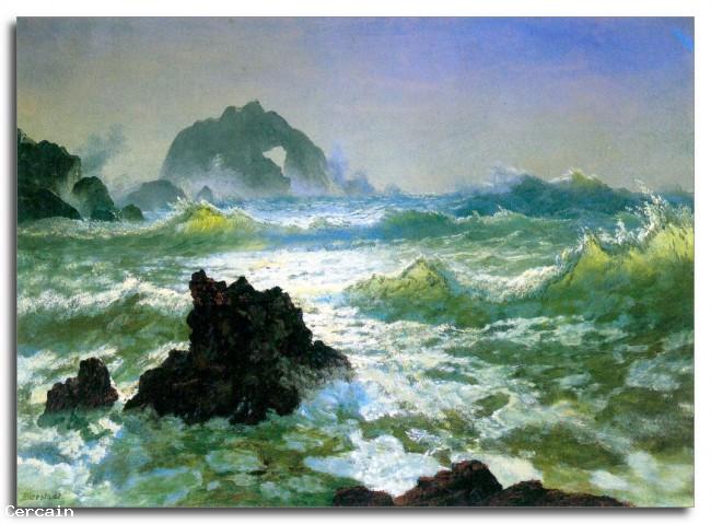Riproduzione Artistica mare tempesta 2 da Bierstadt