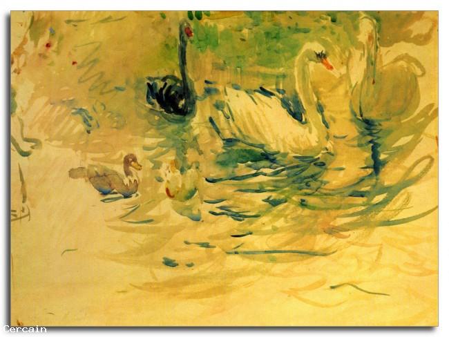 Swans Riproduzione Artistica di Morisot