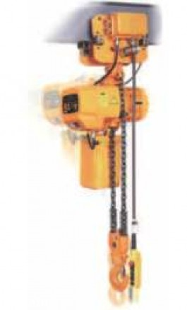 Paranco Elettrico con Carrello di Traslazione elettrica Kg 300