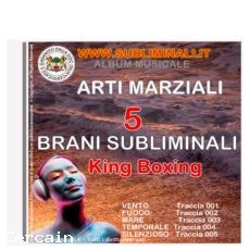 Allenarsi al King Boxing